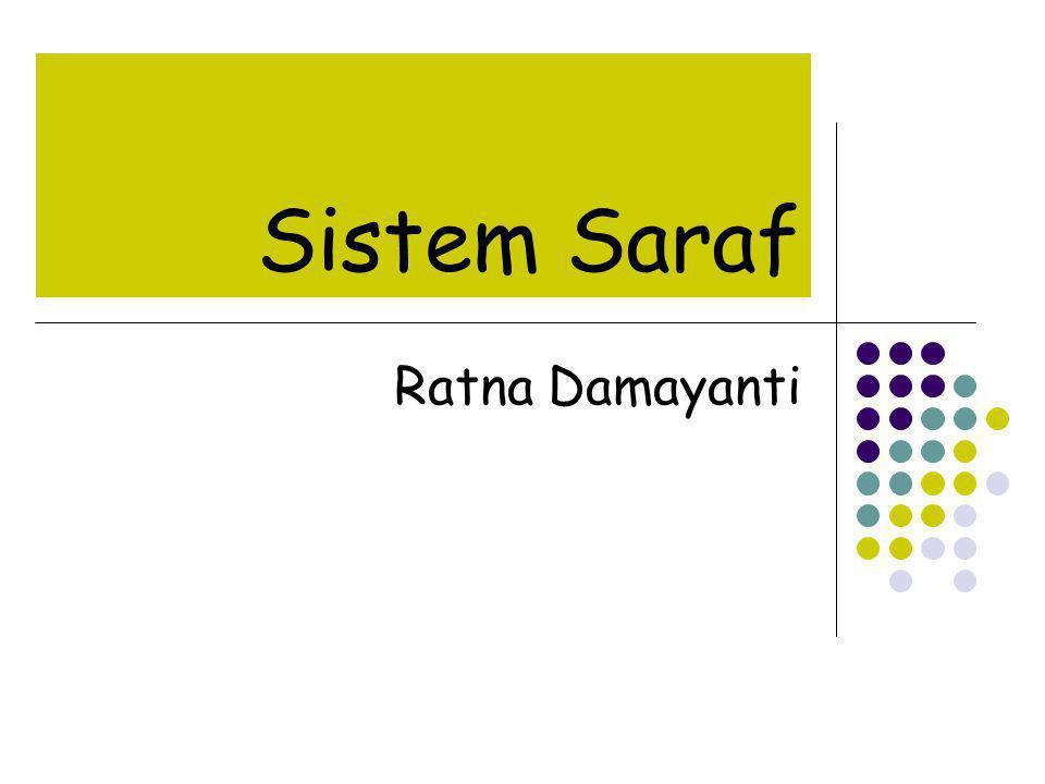 Sistem Saraf Ratna Damayanti