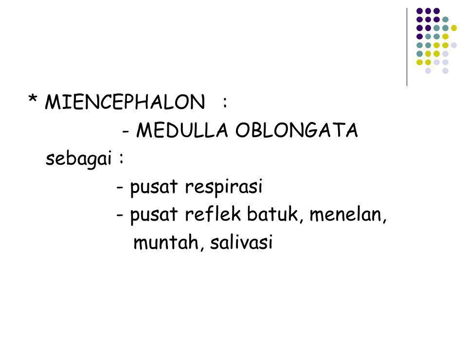 * MIENCEPHALON : - MEDULLA OBLONGATA. sebagai : - pusat respirasi. - pusat reflek batuk, menelan,