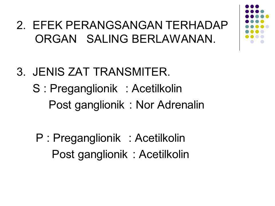 2. EFEK PERANGSANGAN TERHADAP ORGAN SALING BERLAWANAN.