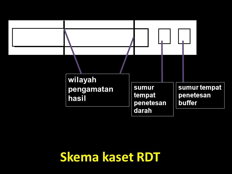 Skema kaset RDT wilayah pengamatan hasil sumur tempat penetesan darah