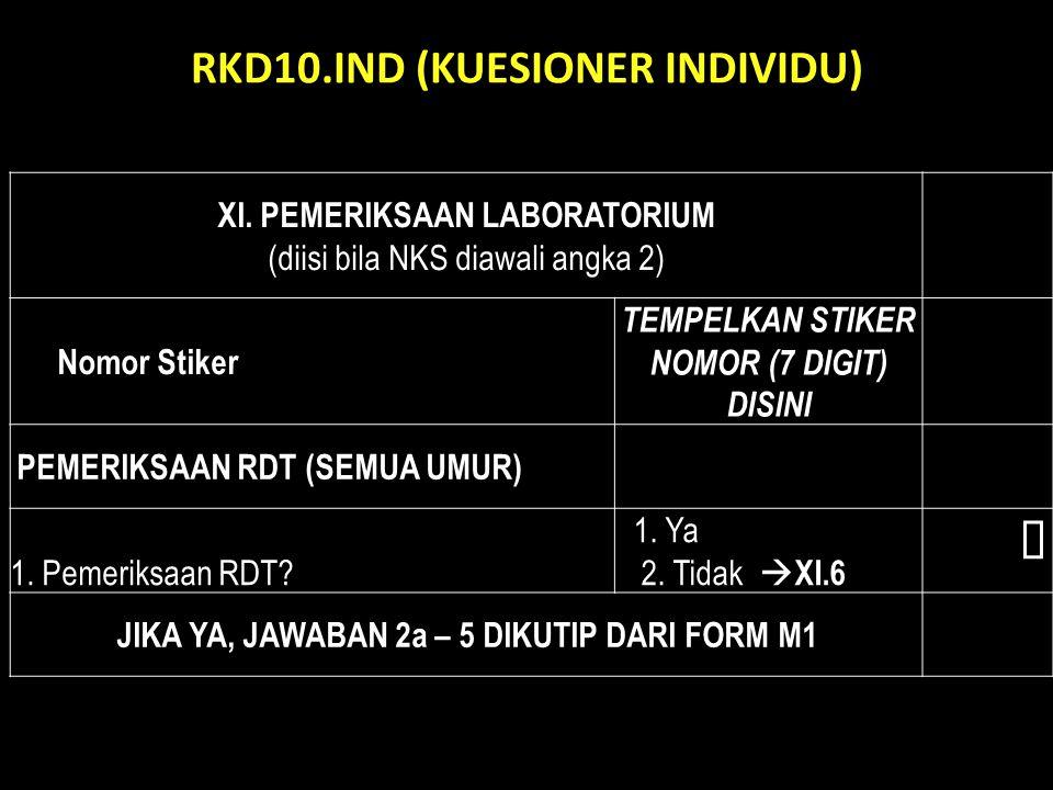 RKD10.IND (KUESIONER INDIVIDU)