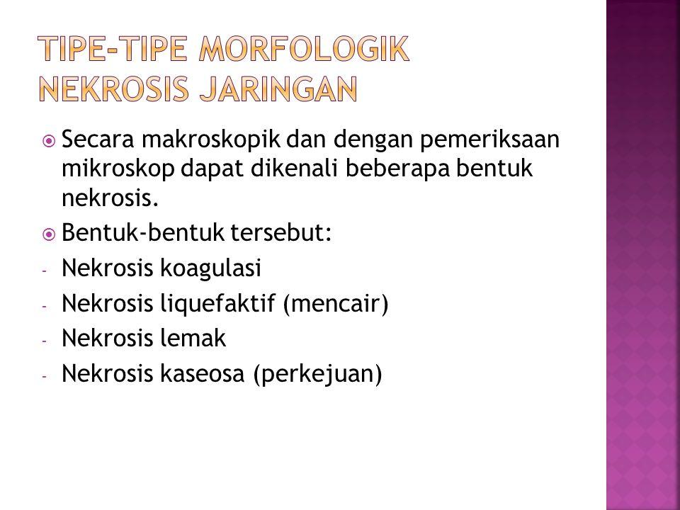 Tipe-tipe morfologik nekrosis jaringan