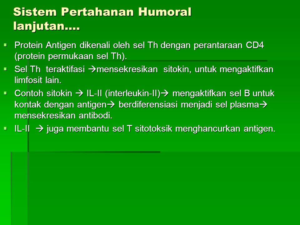 Sistem Pertahanan Humoral lanjutan….