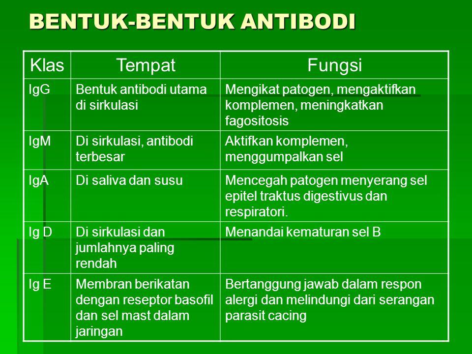BENTUK-BENTUK ANTIBODI
