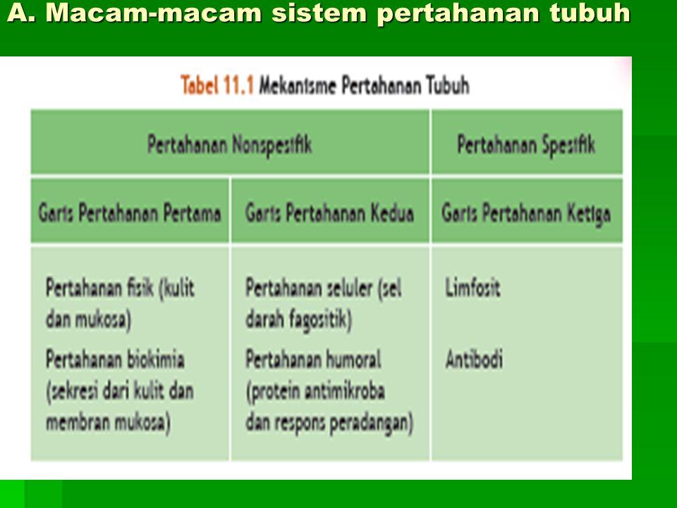 A. Macam-macam sistem pertahanan tubuh