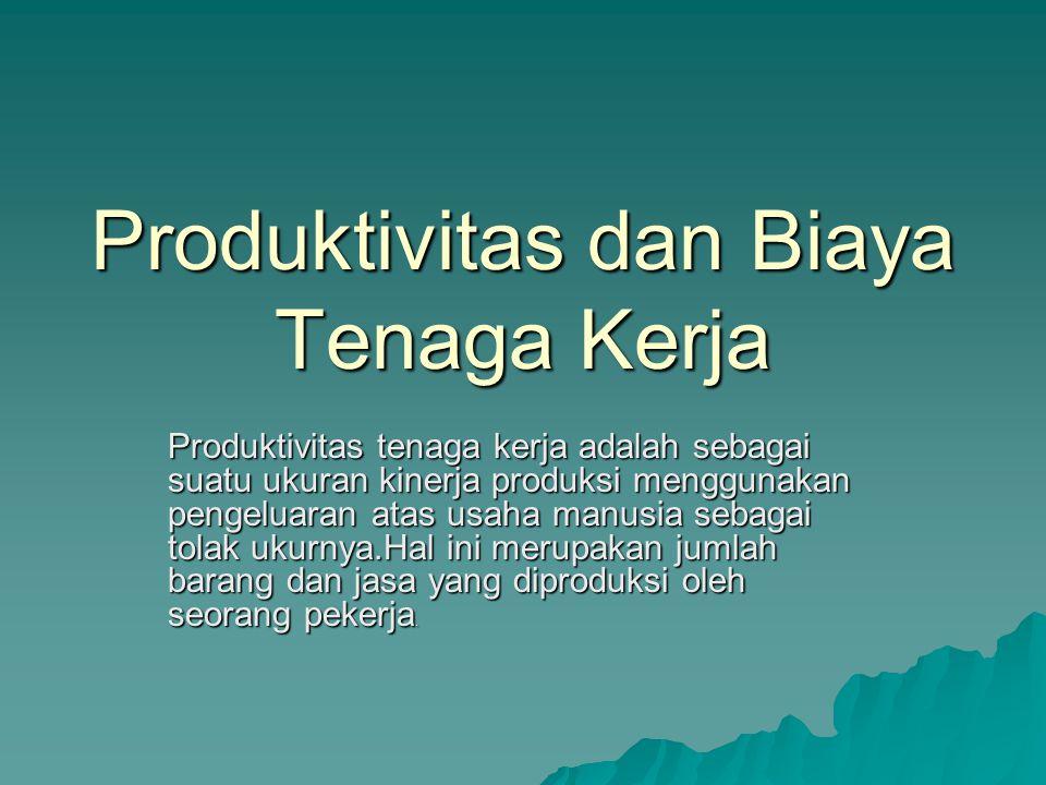 Produktivitas dan Biaya Tenaga Kerja
