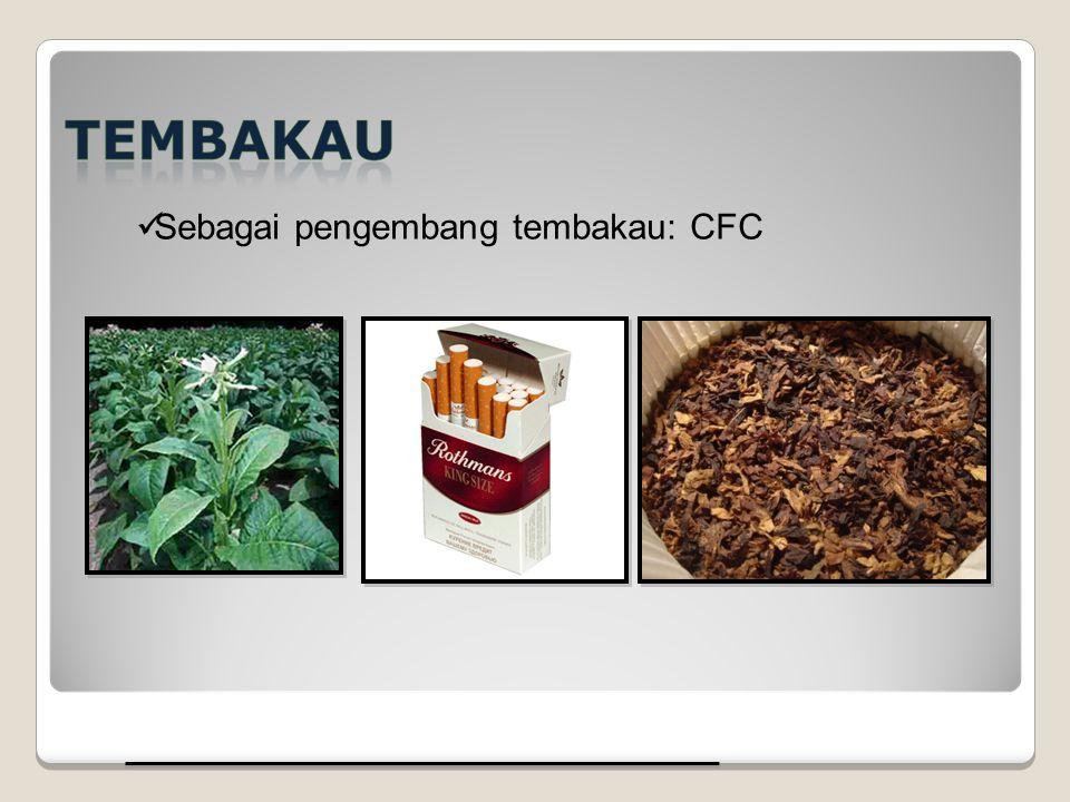 Sebagai pengembang tembakau: CFC