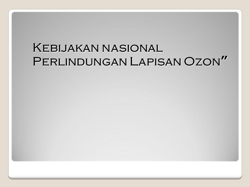 Kebijakan nasional Perlindungan Lapisan Ozon