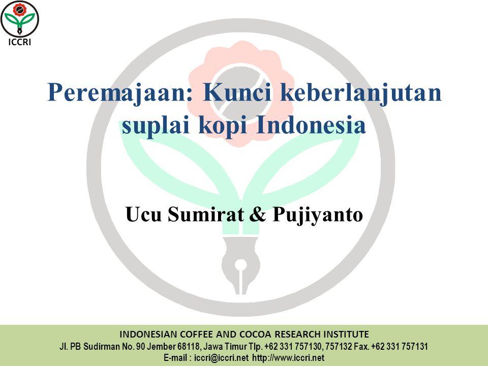 Peremajaan: Kunci keberlanjutan suplai kopi Indonesia