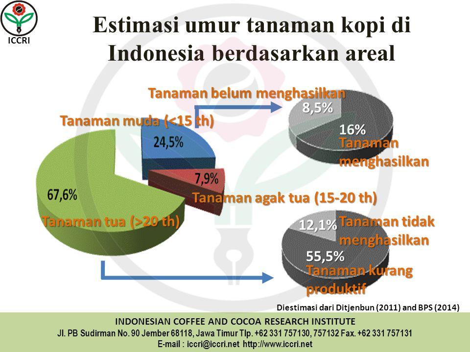 Estimasi umur tanaman kopi di Indonesia berdasarkan areal