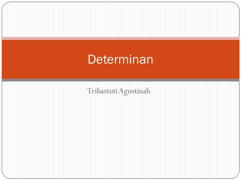 Determinan Trihastuti Agustinah