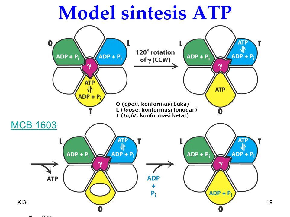 Model sintesis ATP MCB 1603 KI3061 Zeily Nurachman