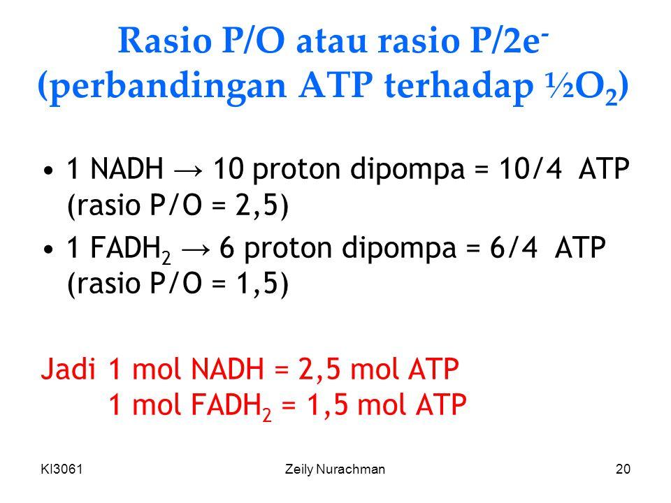 Rasio P/O atau rasio P/2e- (perbandingan ATP terhadap ½O2)