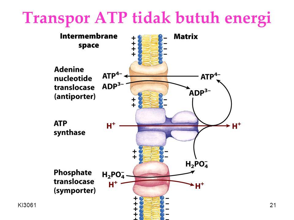 Transpor ATP tidak butuh energi