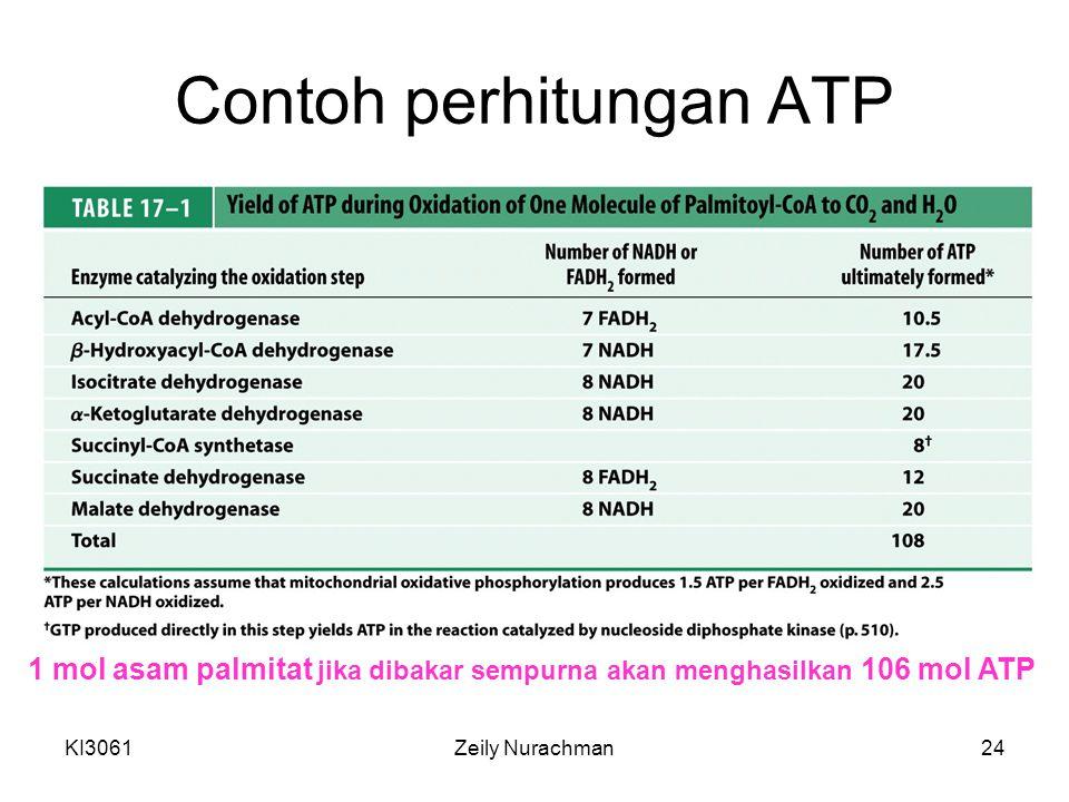 Contoh perhitungan ATP
