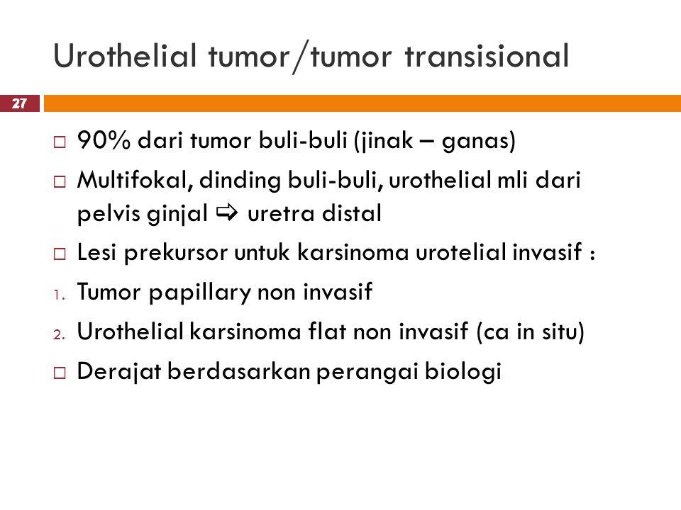Urothelial tumor/tumor transisional