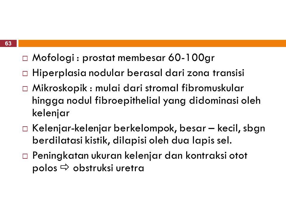 Mofologi : prostat membesar 60-100gr