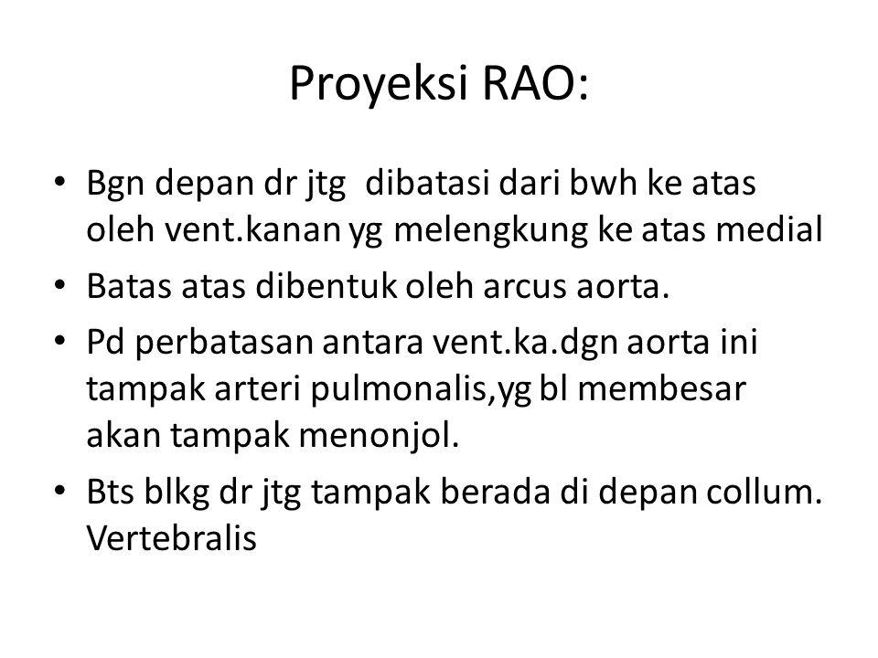 Proyeksi RAO: Bgn depan dr jtg dibatasi dari bwh ke atas oleh vent.kanan yg melengkung ke atas medial.