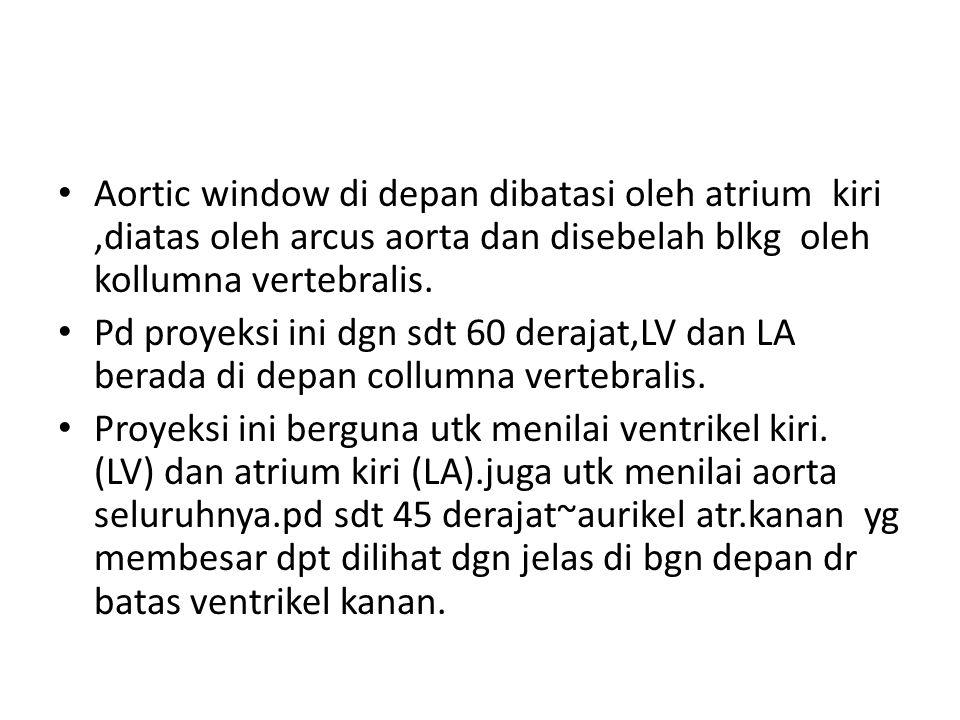 Aortic window di depan dibatasi oleh atrium kiri ,diatas oleh arcus aorta dan disebelah blkg oleh kollumna vertebralis.