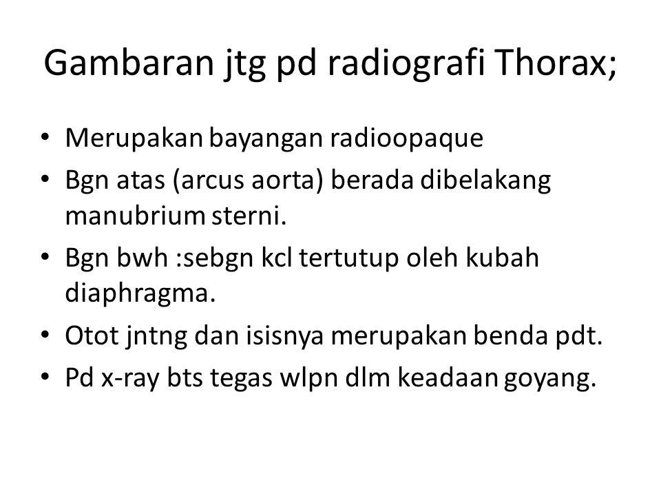 Gambaran jtg pd radiografi Thorax;