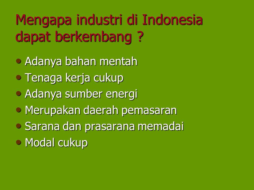 Mengapa industri di Indonesia dapat berkembang