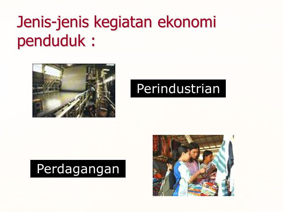 Jenis-jenis kegiatan ekonomi penduduk :
