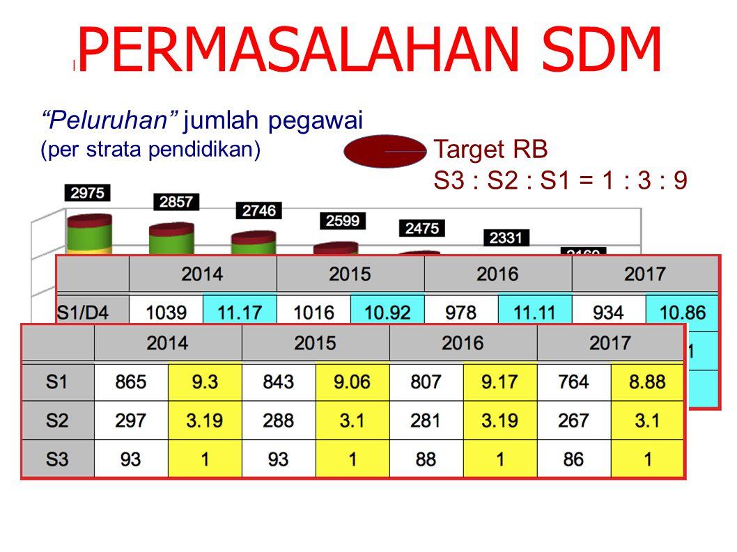 PERMASALAHAN SDM Peluruhan jumlah pegawai Target RB