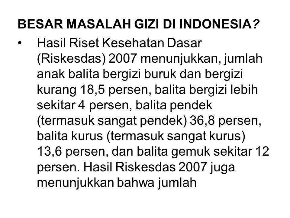 BESAR MASALAH GIZI DI INDONESIA