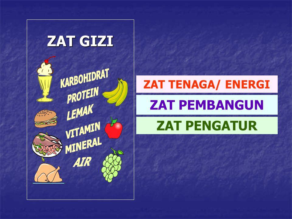 ZAT GIZI ZAT PEMBANGUN ZAT PENGATUR ZAT TENAGA/ ENERGI KARBOHIDRAT