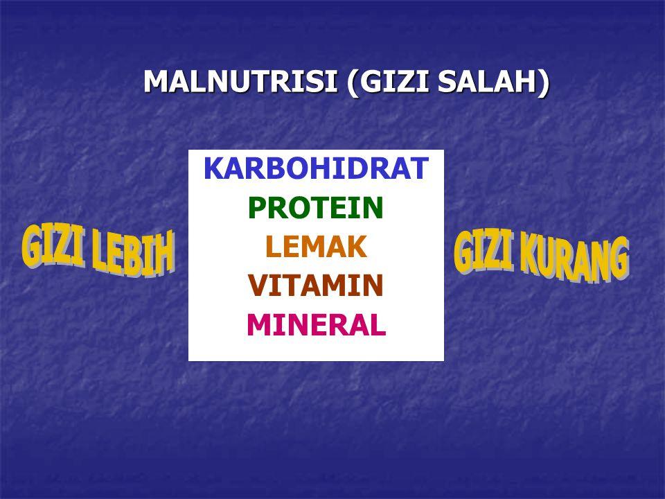 MALNUTRISI (GIZI SALAH)