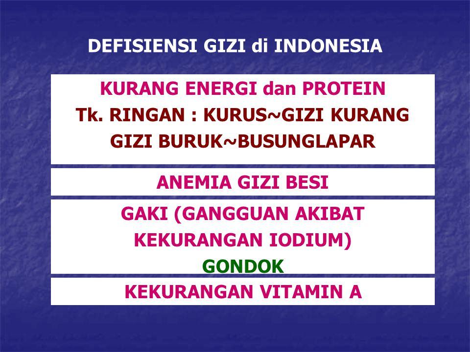 DEFISIENSI GIZI di INDONESIA
