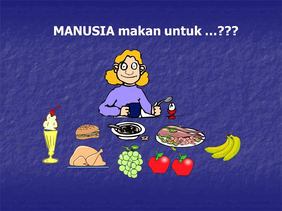 MANUSIA makan untuk …