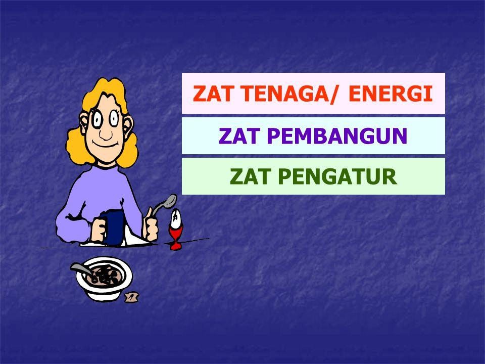 ZAT TENAGA/ ENERGI ZAT PEMBANGUN ZAT PENGATUR