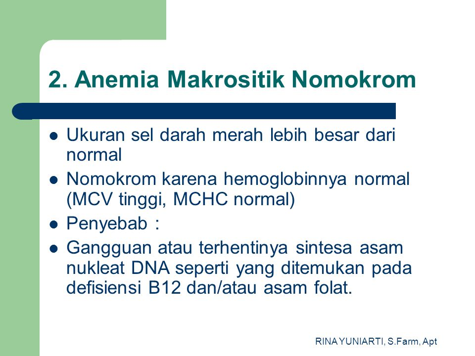 2. Anemia Makrositik Nomokrom