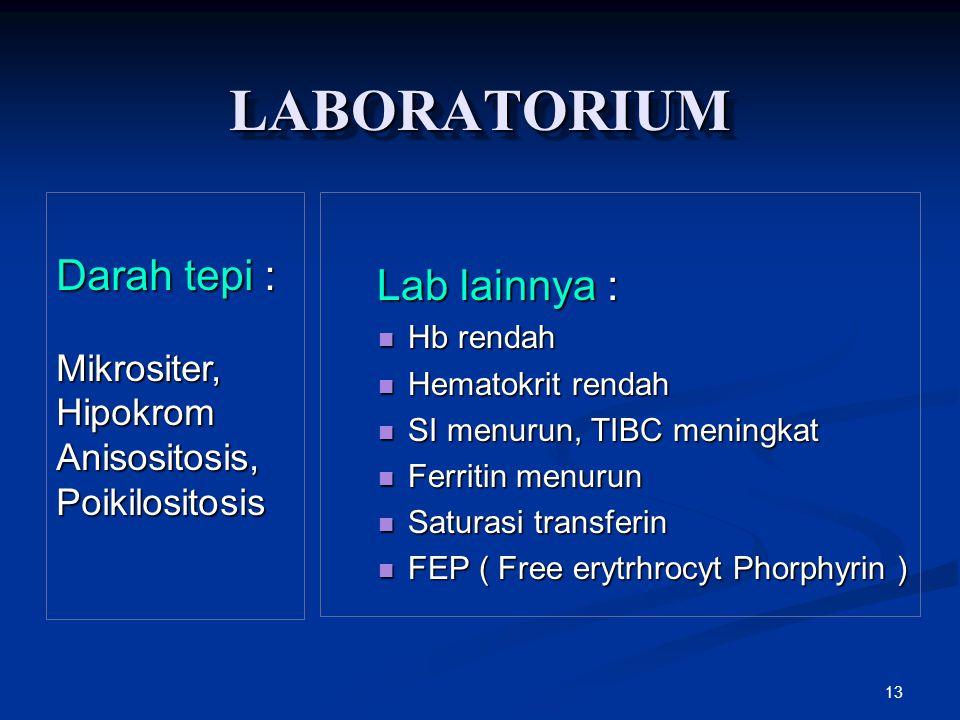 LABORATORIUM Darah tepi : Lab lainnya : Mikrositer, Hipokrom