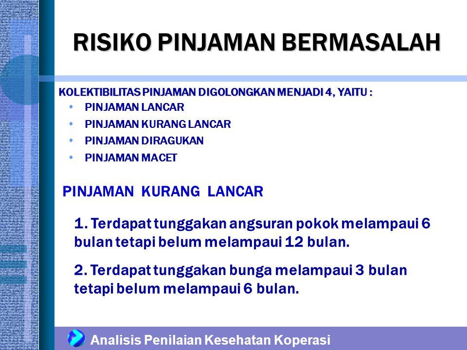 RISIKO PINJAMAN BERMASALAH