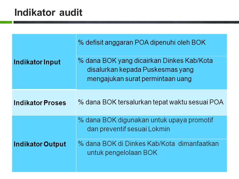 Indikator audit Indikator Input