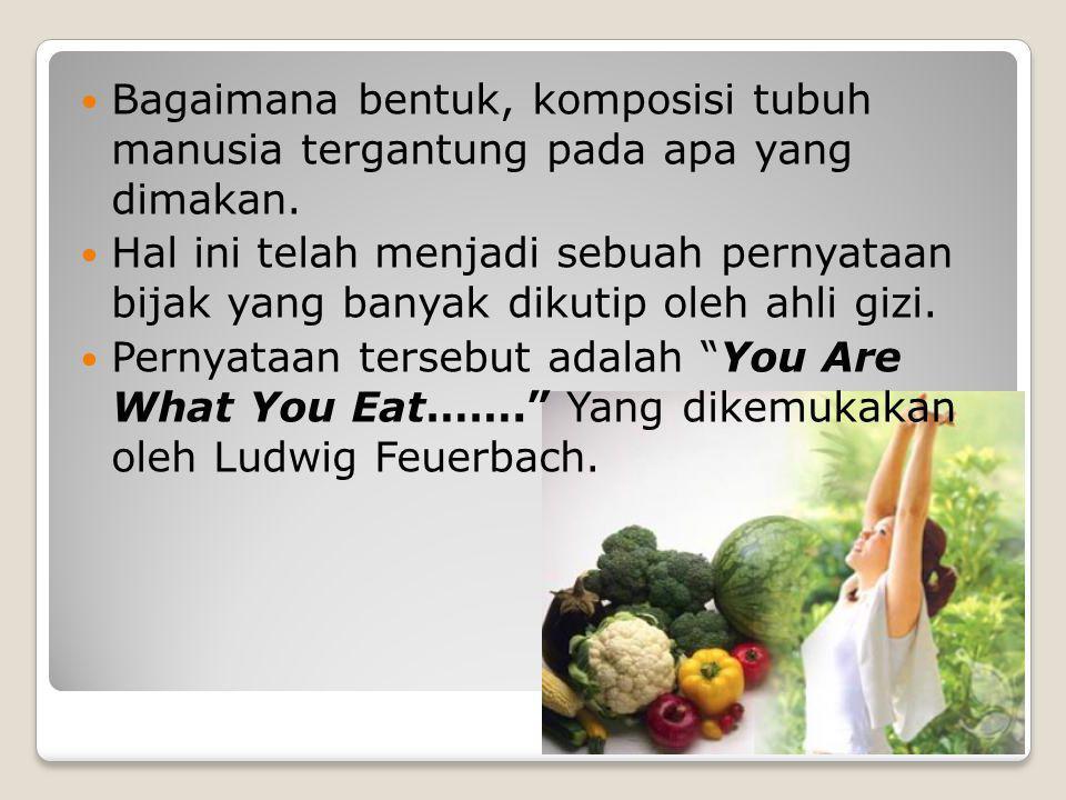 Bagaimana bentuk, komposisi tubuh manusia tergantung pada apa yang dimakan.