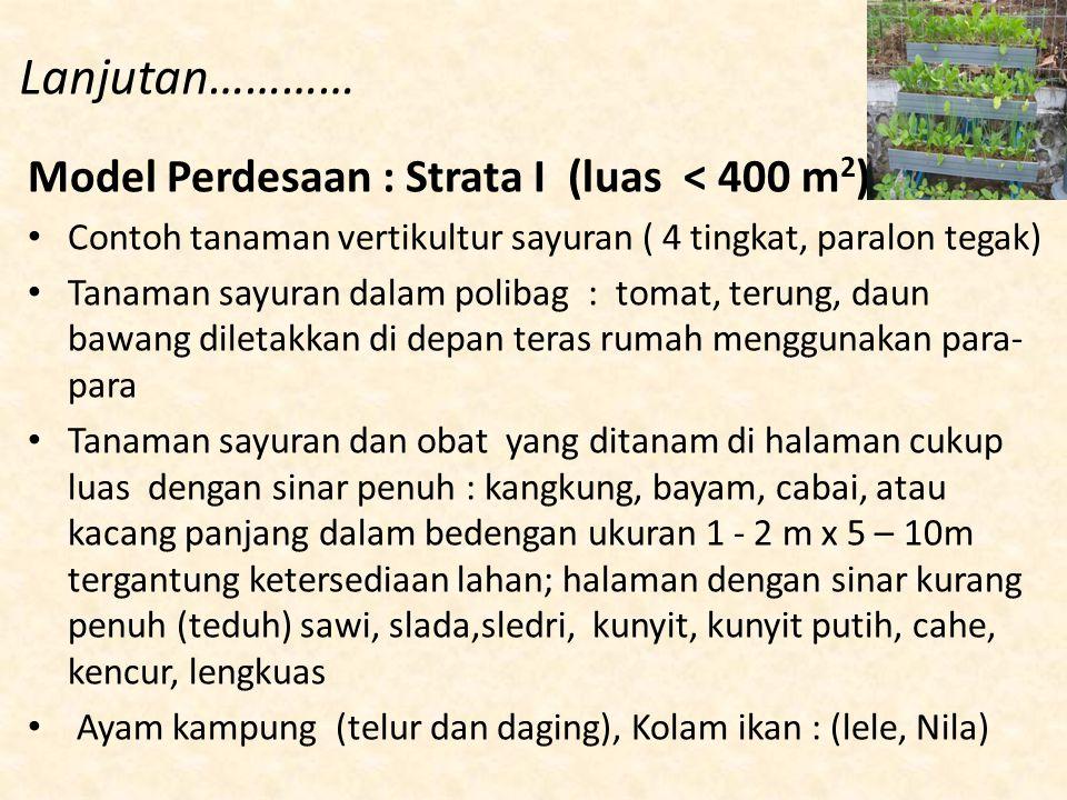 Lanjutan………… Model Perdesaan : Strata I (luas < 400 m2)