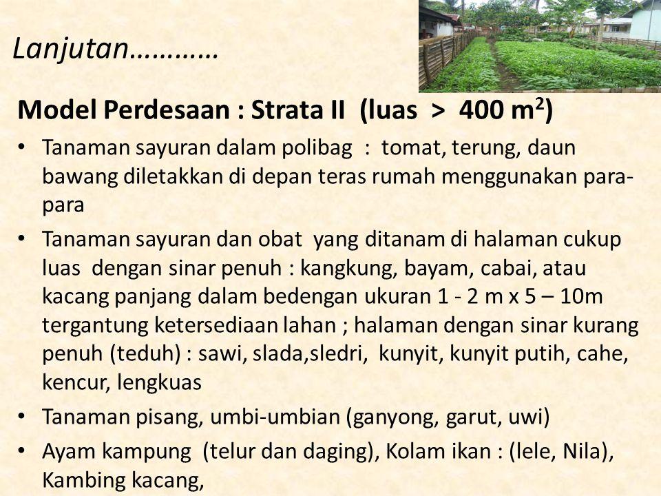 Lanjutan………… Model Perdesaan : Strata II (luas > 400 m2)