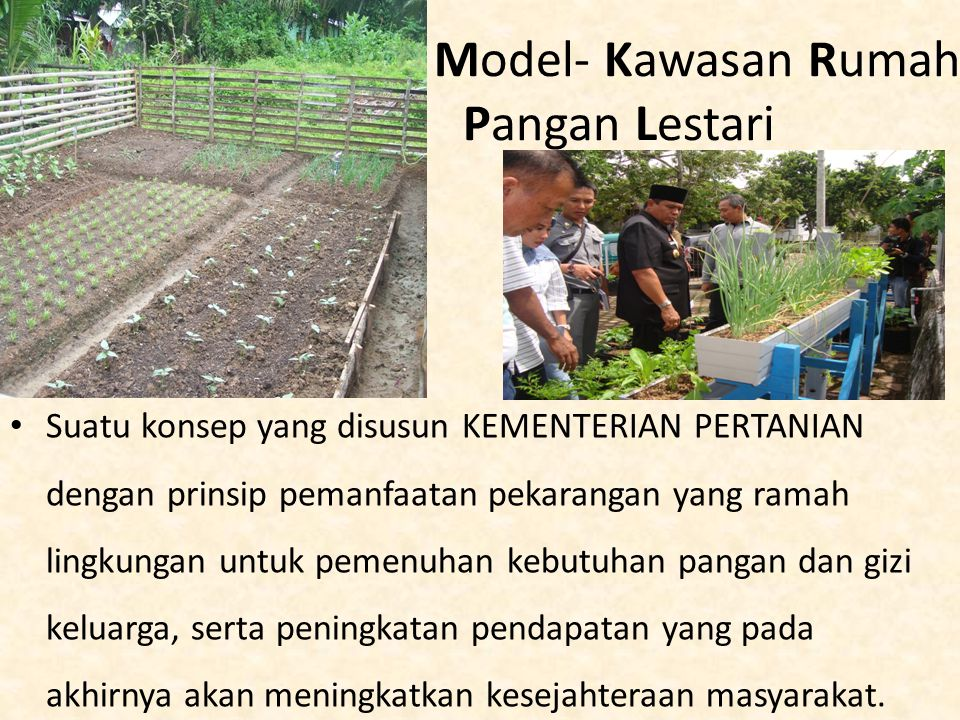 Model- Kawasan Rumah Pangan Lestari