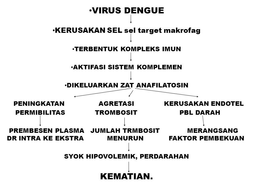 VIRUS DENGUE KEMATIAN. KERUSAKAN SEL sel target makrofag
