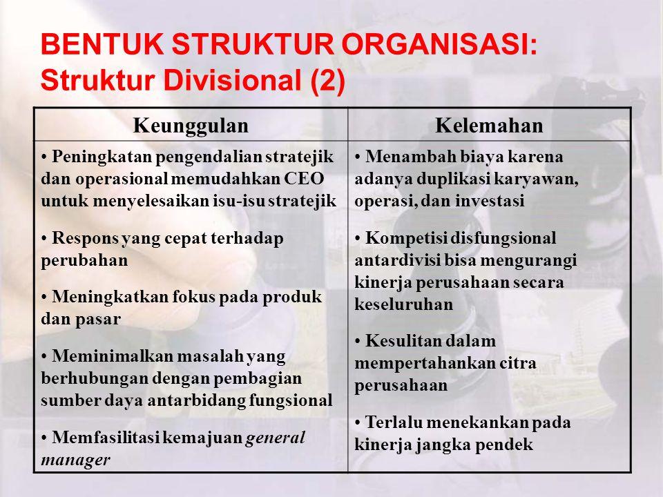 BENTUK STRUKTUR ORGANISASI: Struktur Divisional (2)