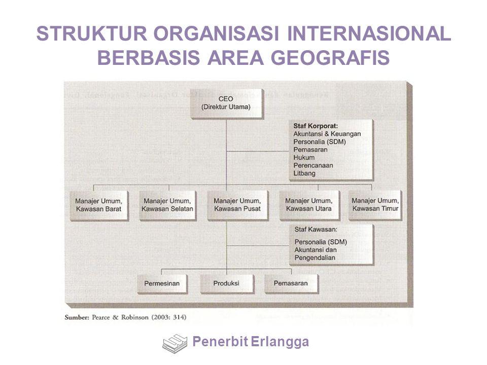 STRUKTUR ORGANISASI INTERNASIONAL BERBASIS AREA GEOGRAFIS