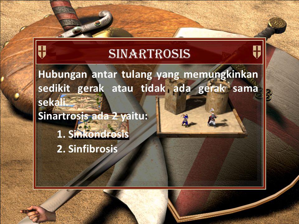 sinartrosis Hubungan antar tulang yang memungkinkan sedikit gerak atau tidak ada gerak sama sekali.