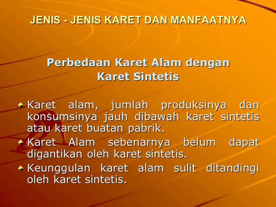 JENIS - JENIS KARET DAN MANFAATNYA
