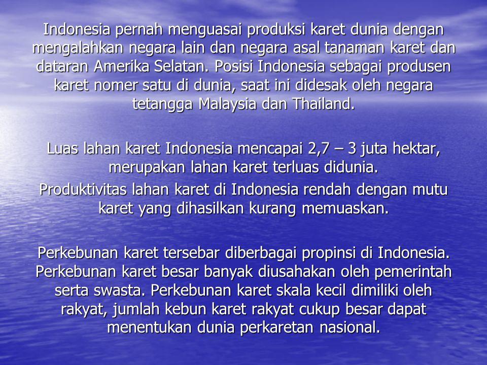 Indonesia pernah menguasai produksi karet dunia dengan mengalahkan negara lain dan negara asal tanaman karet dan dataran Amerika Selatan. Posisi Indonesia sebagai produsen karet nomer satu di dunia, saat ini didesak oleh negara tetangga Malaysia dan Thailand.