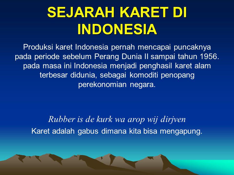 SEJARAH KARET DI INDONESIA