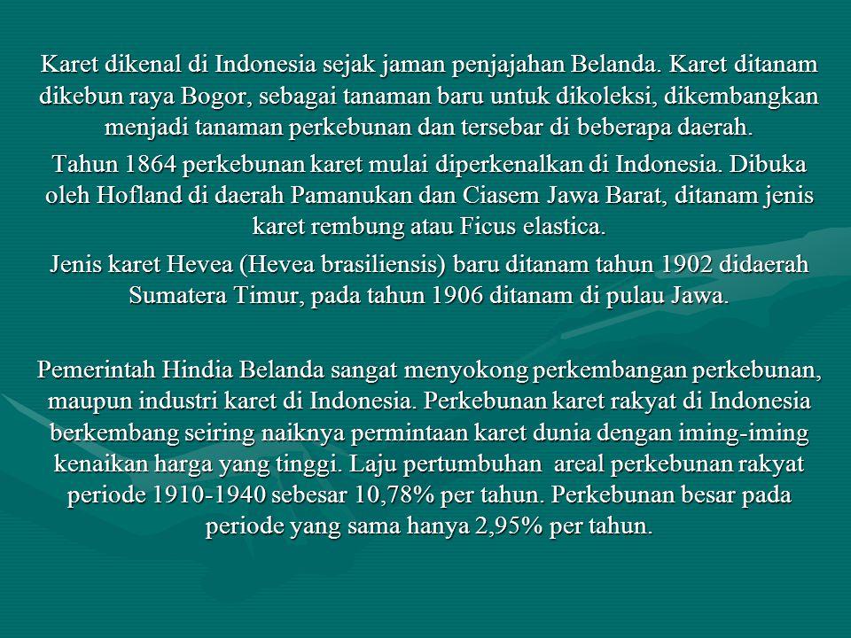 Karet dikenal di Indonesia sejak jaman penjajahan Belanda