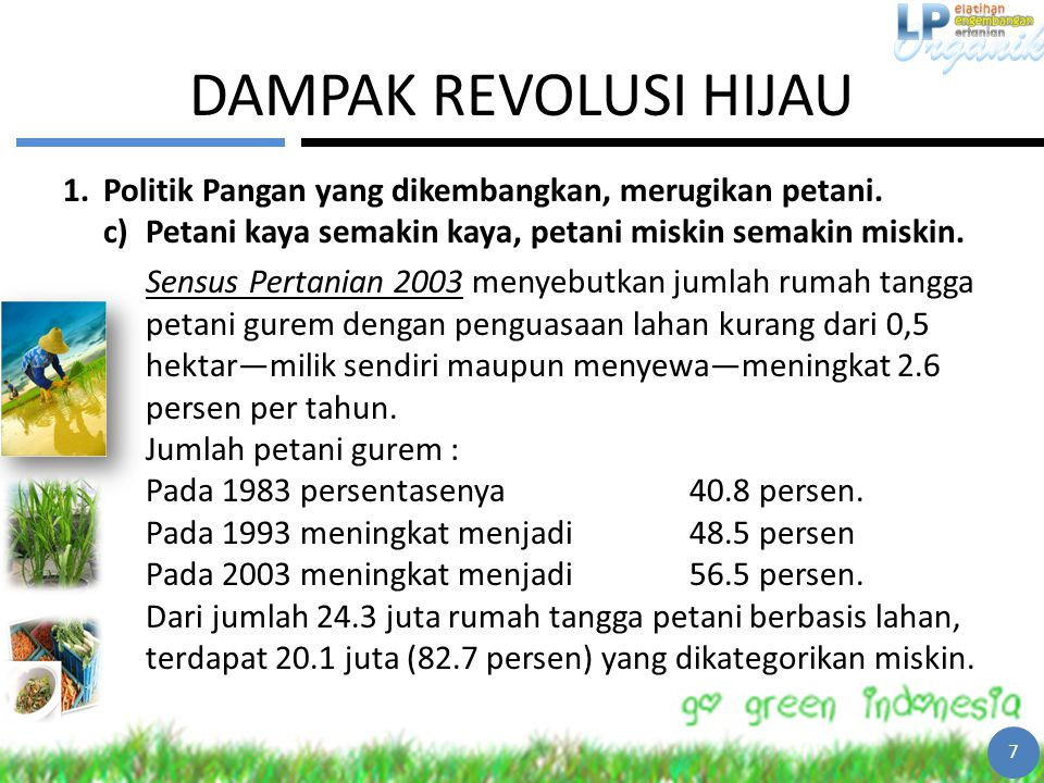 DAMPAK REVOLUSI HIJAU Politik Pangan yang dikembangkan, merugikan petani. Petani kaya semakin kaya, petani miskin semakin miskin.